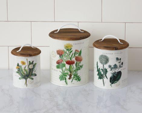 Botanical Tins - Thistle, Echinop, and Dandelion