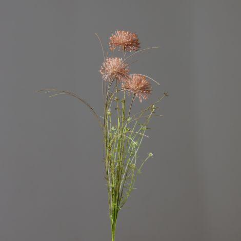 Branch - Mocha Allium (Pk 2)