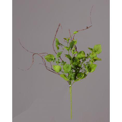 Bush - Assorted Green Foliage (Pk 3)