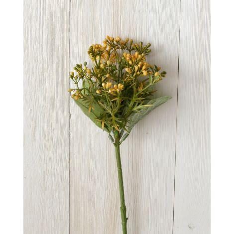 Pick - Seeded Foliage (Pk 6)