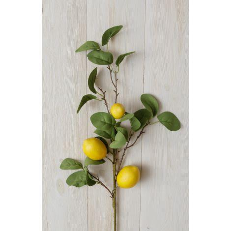 Branch - Lemon (Pk 2)