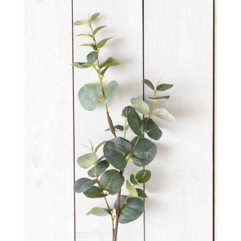 Pick - Eucalyptus Leaf (Pk 2)