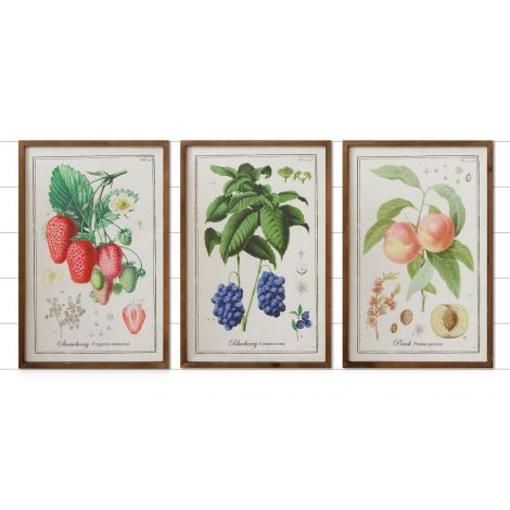 Signs - Fruit Prints