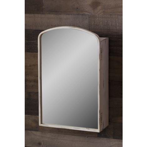 Mirrored Storage Case